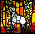 """Lamb"" from the Ong Chapel stained glass windows"